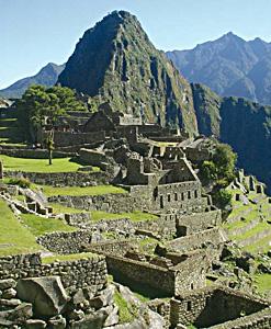 중남미 외 기타지역